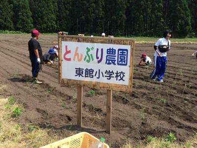 とんぶり農園!