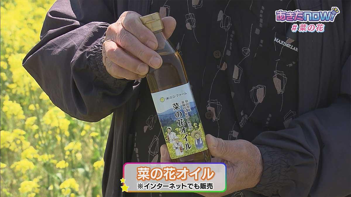 菜の花畑 大仙市協和小種