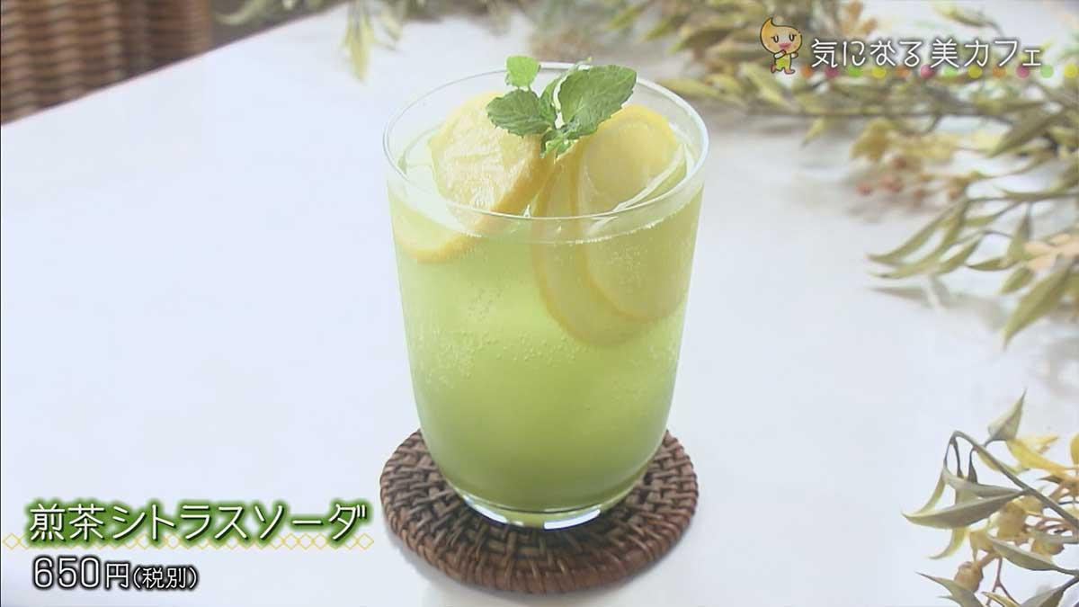 煎茶シトラスソーダ