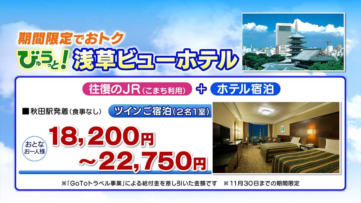 浅草ビューホテル料金