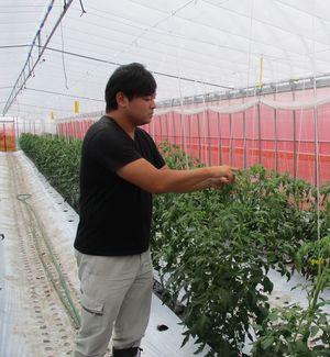 新規就農「ワイベジ」安藤努さん