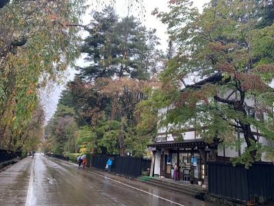 今年の秋は人力車で紅葉を楽しもう!