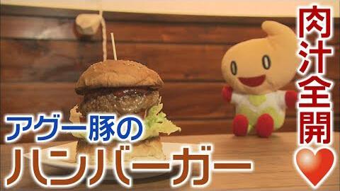 【秋田放送 エビス堂】肉汁全開!アグーバーガー