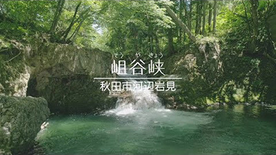 【秋田 神秘の自然】新緑の滝・岨谷峡