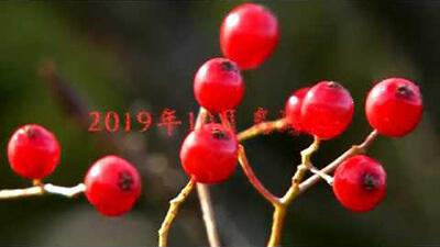 【錦秋の山旅】名峰・鳥海山 秋の絶景