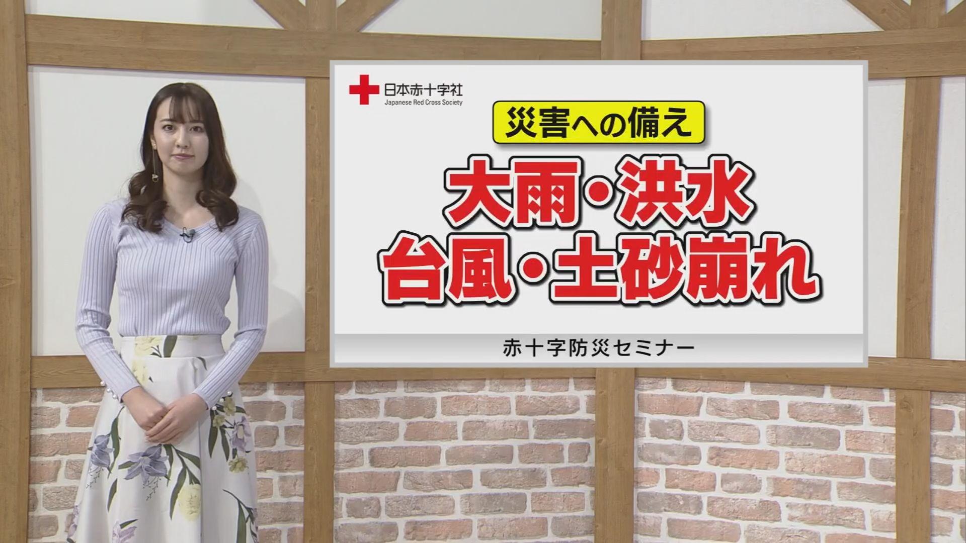 災害への備え「大雨・洪水・台風・土砂崩れ」